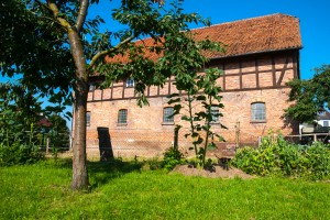 Garten unseres Hofes in Behrensen